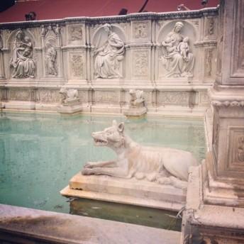 A fountain in Siena.